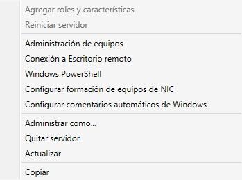 Consola Remota Terminal Server en Windows 8: Propiedades del cada servidor en el menú de conexión.